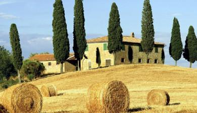 trees-farmhouse-italy1-390x224