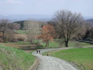 Walkers in San Gimignano